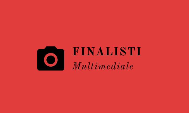 Finalists VII ediz - Multimedia section Edito or Inedito